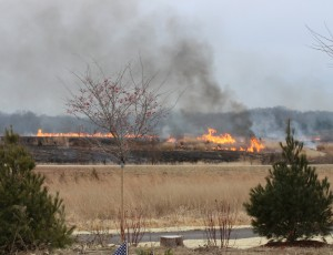 Busch Wildlife Prescribed Burn